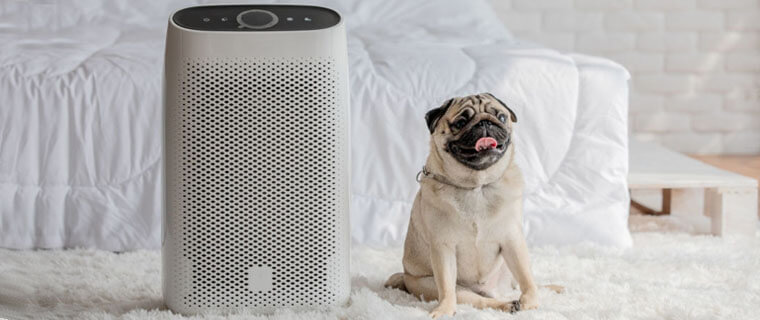 how to use an air purifier, how to make an air filter