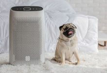 best room air purifier, air purifier, air purifier reviews